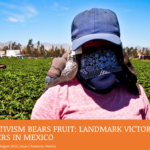 Women's Activism Bears Fruit: Landmark Victory for Farm Workers in Mexico
