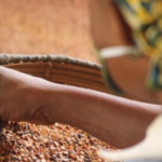 Women's Work in Agribusinesses and Gender-Based Violence: What Do We Know?