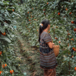Female Domestic and Agricultural Workers Confront an Epidemic of Sexual Harassment