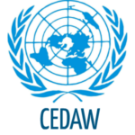 CEDAW | General recommendation No. 35